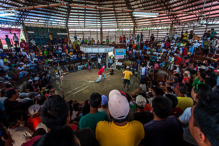 Philippines cock fighting arena